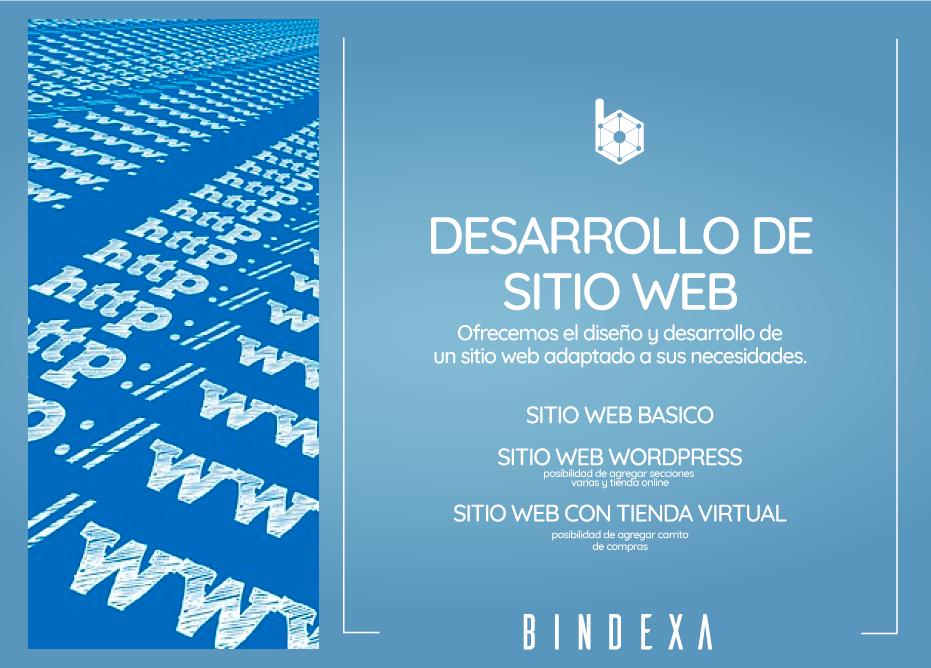 Bindexa - Sistemas y Web