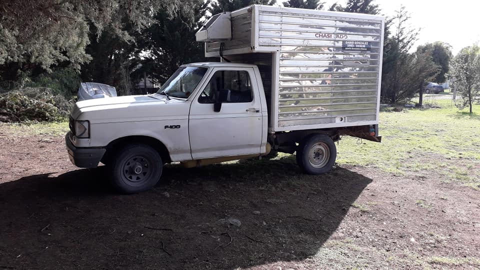 FORD  F100 1988
