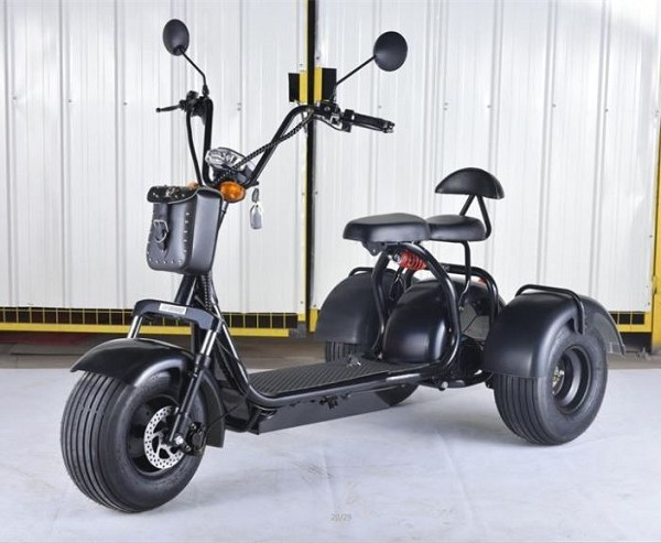 Citycoco electric scooter