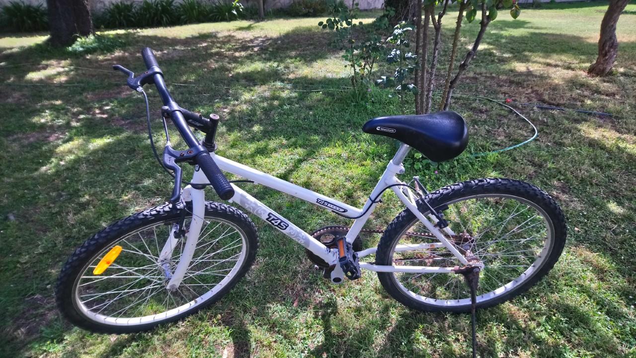 """Bicicleta dama 20"""""""